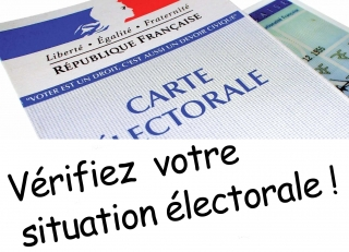 53828_44067_situation_carte_electorale