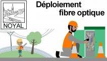 57291_49626_elagage_fibre_optique